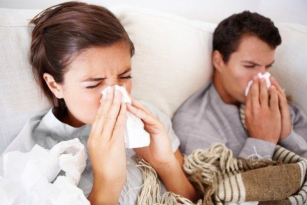 Yến sào giúp bạn chống lại các hoạt động của những vi khuẩn có hại cho cơ thể