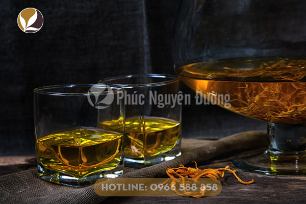 Sử dụng rượu đông trùng để đảm bảo sức khỏe bạn và gia đình