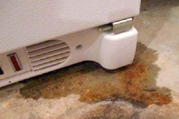 Dịch vụ sửa chữa tủ lạnh Electrolux tại nhà an toàn và hiệu quả