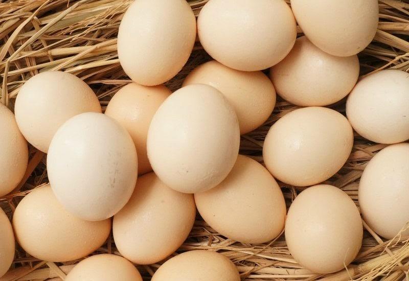 Mơ thấy trứng đánh con gì?